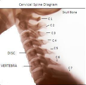 Cervical Spine X Ray Picture